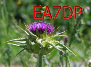 image of ea7jqt