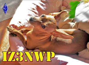 image of iz3nwp